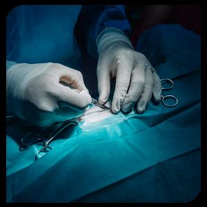 chirurgie-cabinet-veterinaire-deswijsen-veterinaire-Gembloux