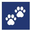 icons-clinique-assistantes-veterinaire-veterinaire-Gembloux